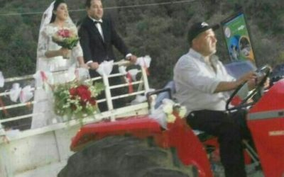 Syrian weddings: protocols must be followed before falling in love.